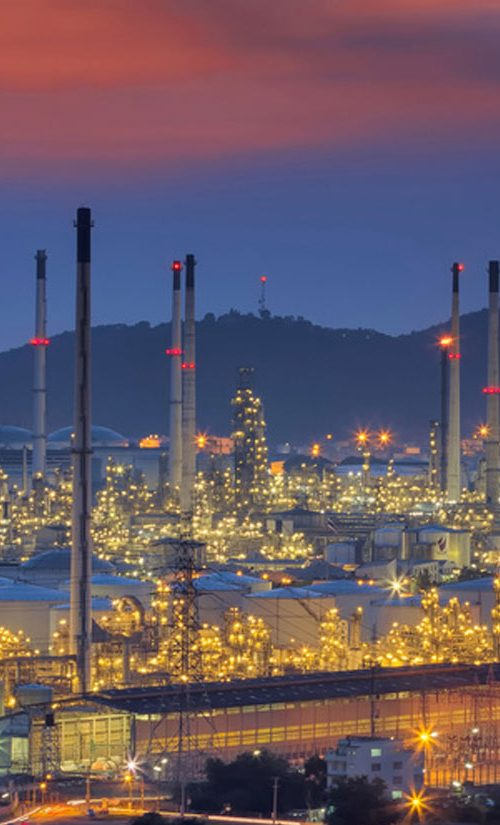 Petrochemical and Chemical Sector